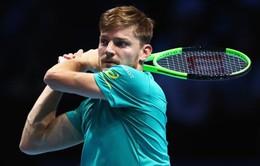 ATP Finals 2017: Goffin đối đầu Federer, Dimitrov gặp Jack Sock ở bán kết