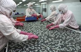 Tôm thẻ chân trắng Hà Tĩnh xuất khẩu thành công sang Malaysia