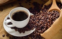 Để đến tay người tiêu dùng, cà phê rang xay sạch đã trải qua những công đoạn này