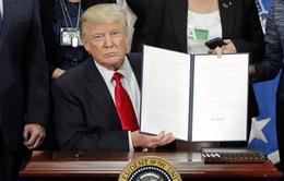 """Sắc lệnh cấm nhập cư của Tổng thống Mỹ được Tòa án """"bật đèn xanh"""""""