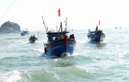 Nhiều mô hình tổ đội, tự quản tàu thuyền giúp ngư dân yên tâm vươn khơi bám biển