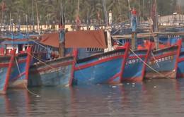 Bình Định nhanh chóng thông tin áp thấp nhiệt đới cho các tàu cá