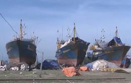 Sắp ban hành Nghị định 67 sửa đổi, bổ sung về chính sách phát triển thủy sản