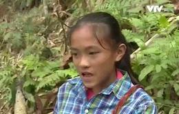 Cô bé 14 tuổi nơi rẻo cao Phú Thọ ước mơ đến trường