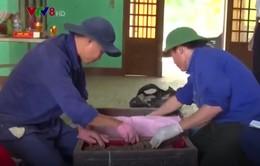 Phát hiện nhiều hài cốt liệt sỹ tại hố chôn tập thể ở Quảng Trị