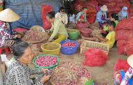 TP.HCM đưa chợ đầu mối thành điểm du lịch