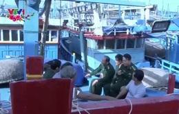 Những người cùng ngư dân bám biển trong dịp Tết