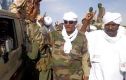 Sudan bắt giữ trùm phiến quân ở Darfur