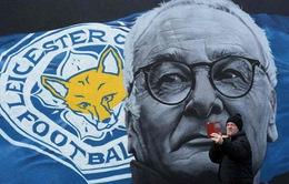 """Không có chuyện Ranieri bị sa thải vì """"bạo loạn"""" trong phòng thay đồ Leicester City"""