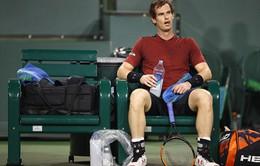 Sau Miami Open, Andy Murray tiếp tục lỡ hẹn với tứ kết Davis Cup 2017