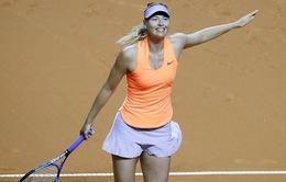 Tứ kết Stuttgart mở rộng 2017: Sharapova tiếp tục thi đấu ấn tượng