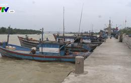 Bãi biển bồi lấp - ngư dân Quảng Nam gặp khó