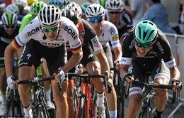 Sự khắc nghiệt của giải đua xe đạp Tour de France