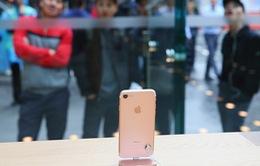 Đừng chờ iPhone X, hãy mua iPhone 8!