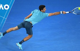 Highlight Novak Djokovic 3-0 Fernando Verdasco (6/1, 7/6, 6/2)