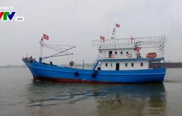 Thừa Thiên - Huế đưa vào sử dụng tàu vỏ thép lớn nhất tỉnh