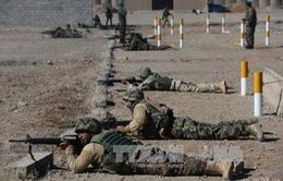 NATO tổ chức diễn tập quản lý thảm họa