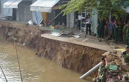 ĐBSCL mất 5km2 đất ven biển do sạt lở mỗi năm