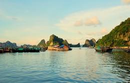 Những giá trị thiên nhiên phong phú của vùng biển đảo Vân Đồn (15h30, 19/3, VTV1)