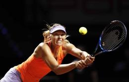 Vòng 1 Stuttgart mở rộng 2017: Sharapova trở lại ấn tượng