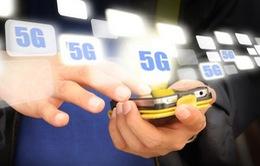 Việt Nam sẽ phát triển hạ tầng băng rộng chuẩn bị cho 5G