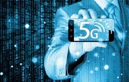 Các nhà mạng, doanh nghiệp khẩn trương chuẩn bị triển khai mạng 5G