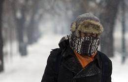 Giá lạnh tại châu Âu khiến 65 người thiệt mạng