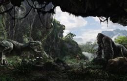 """Quảng Bình tổ chức tour tham quan phim trường """"Kong: Skull Island"""""""