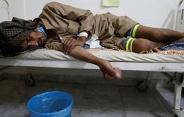 Yemen: 17 người tử vong vì dịch tả mỗi ngày