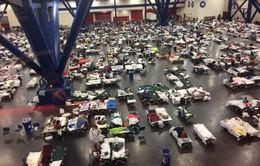 Mỹ xem xét khoản hỗ trợ tái thiết gần 8 tỷ USD sau bão Harvey