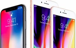"""Apple hủy ra mắt iPhone màn hình OLED 5.3 inch: Samsung hết cửa """"làm ăn""""?"""
