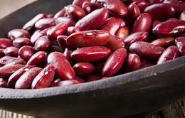 Lợi ích tuyệt vời từ đậu đỏ