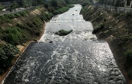 Nước kênh Ba Bò (TP.HCM) đen đặc, bốc mùi hôi thối
