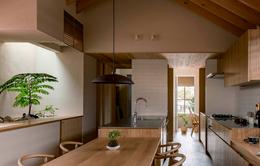 """Thiết kế nhà với nội thất toàn bằng gỗ và khoảng """"giếng trời"""" xanh ngát"""