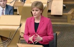 Scotland tiếp tục kế hoạch rời khỏi Anh
