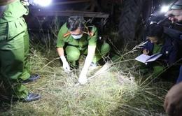 Khởi tố 7 đối tượng trong vụ hỗn chiến tranh giành đất ở Đăk Lăk