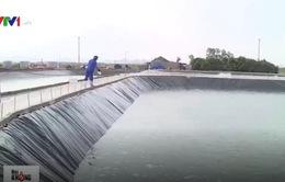 Quy trình nghiêm ngặt nuôi tôm sạch ở Quảng Ninh