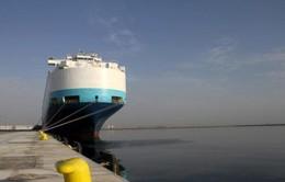 Qatar bắt đầu vận chuyển hàng hóa qua Oman