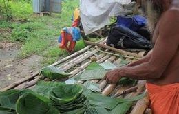 Ấn Độ: Tận dụng sản phẩm từ cây chuối để hạn chế sử dụng nhựa