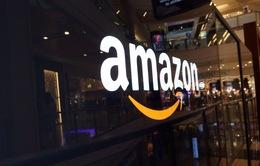 Giám đốc kinh doanh Amazon đến Việt Nam