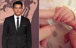 Quách Phú Thành đã đặt tên tiếng Anh cho con gái