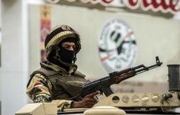 Ai Cập tiêu diệt 12 kẻ khủng bố ở Sinai