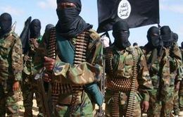Thủ lĩnh tổ chức Hồi giáo cực đoan al-Shabaab ở Somalia đã đầu hàng