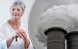 Bệnh Alzheimer có liên quan đến ô nhiễm không khí