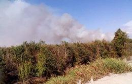 Cháy lớn thiêu rụi 30 ha rừng tràm tại An Giang