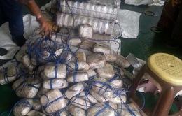 Bắt giữ vụ vận chuyển ma túy lớn nhất tại Ấn Độ