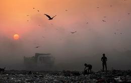 Ô nhiễm môi trường gây ra 1/6 ca tử vong trên thế giới
