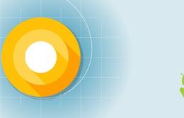 Giao diện tìm kiếm cài đặt trên Android O thân thiện hơn với người dùng