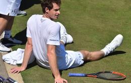 Wimbledon 2017: Chấn thương sẽ cản bước Murray bảo vệ ngôi vương?