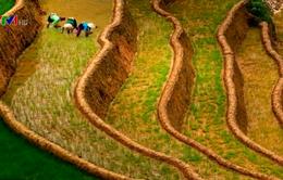 Việt Nam giành 7 huy chương vàng nhiếp ảnh quốc tế